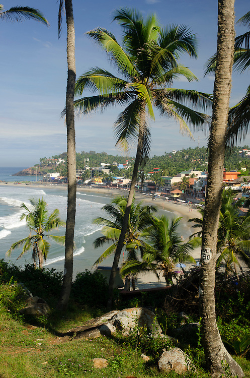 Palm trees on Kovalam beach in Kerala, Indian Subcontinent
