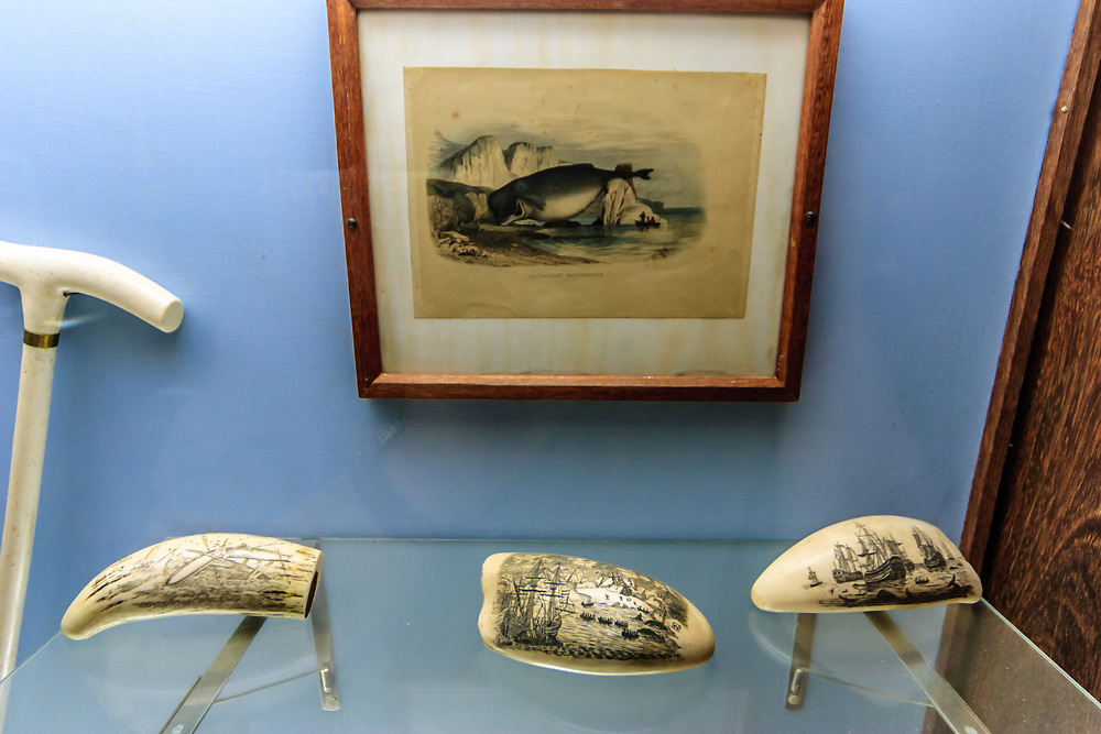 Whale scrimshaw in Madeira Whale Museum. Scrimshaw is an art form where engravings and carvings are done in bone or ivory. Typically it refers to the handiwork created by whalers made out of sperm whale the bones and teeth, the baleen of other whales, and the tusks of walruses.