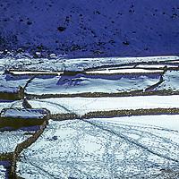 NEPAL, HIMALAYA. Stone walls surrounding snow-covered potato fields in Luza, Gokyo Valley, Khumbu region.