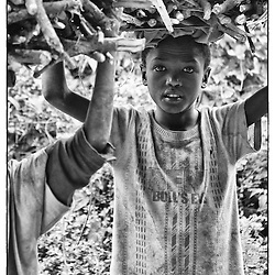 A Ethiopian child collect wood and carries on his had back to his home.