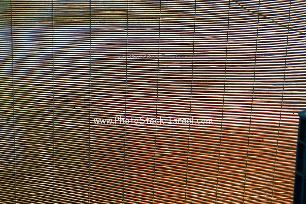 Looking outdoors through thin slits in wooden blinds