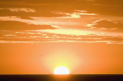 Jun. 20, 2009 - A sun setting against an orange sky. Not Released (NR) (Credit Image: © Cultura/ZUMAPRESS.com)