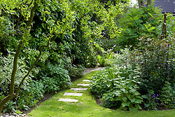 Stepping stone path in lawn