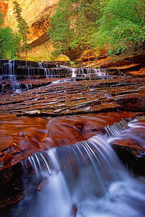 The Left Fork of North Creek is one of many small rivers that cut into the high plateaus in the backcountry of Zion National Park, forming deep canyons that are often wide and V-shaped lower down, but become quite narrow upstream, with sheer cliffs of Navajo sandstone that rise to heights of 1,500 feet. North Creek splits into left and right forks but the canyon of the former (also known as Great West Canyon) is the most spectacular and easiest reached, famous in part because of a feature known as The Subway, where the creek flows almost through a tunnel - a long, tubular passage with only a narrow opening above.