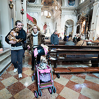 VENICE, ITALY - JANUARY 15:  Two women with their dogs leave after attending a special service with a blessiing of  pets and animals held by Don Filippo Chiafoni Chaplain of the Church of S Francesco da Paola on January 15, 2012 in Venice, Italy. The blessing of animals and pets is a very ancient tradition dating back from San Francis of Assisi.