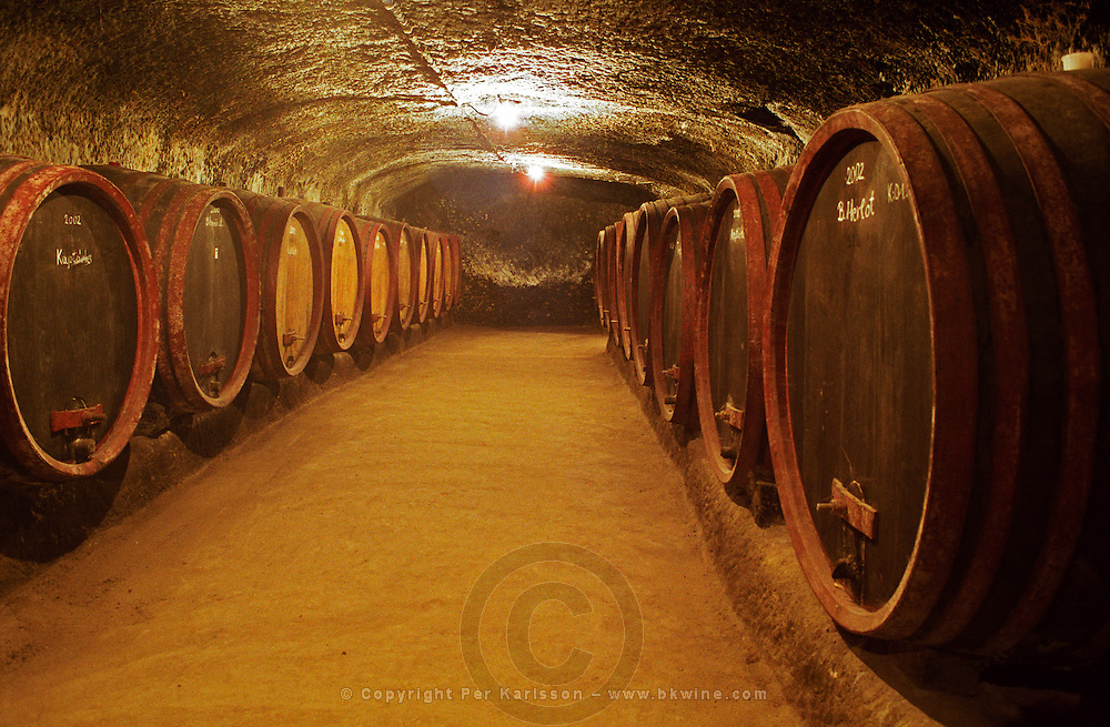 The Thummerer winery in Eger: the underground cellar tunnels with rows of barrels with aging wine. Thummerer is one of the leading growers and wine makers in Eger. Credit Per Karlsson BKWine.com