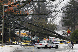 April 16, 2018 - Toronto, ON, Canada - TORONTO, ON - APRIL 16  - A large tree was blown over on Southwood Dr. in the Upper Beaches, April 16, 2018. No injuries or major property damage reported. Andrew Francis Wallace/Toronto Star (Credit Image: © Andrew Francis Wallace/The Toronto Star via ZUMA Wire)