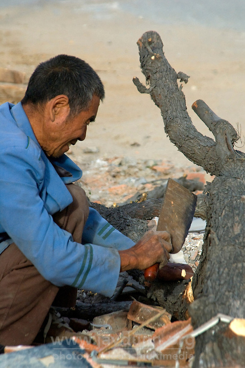 """China, Beijing, Chaoyang, San Jian Fang, 2008. Virtually everything made of wood is this recycler's goal, using little more than a traditional Chinese kitchen knife and a """"sanluche,"""" or three-wheel bicycle cart."""