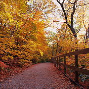 Matthiessen State Park is located in central LaSalle County, near Utica, Illinois. Matthiessen is a paradise for those interested in geology as well as recreation. Visitors can expect to see beautiful rock formations in addition to unusual and abundant vegetation and wildlife.