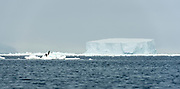 Drift ice and giant ice bergs in McMurdo Sound, Antarctica.