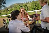 Wine Tasting - Stock Photography