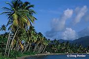 beach on northwest coast of Dominica ( Eastern Caribbean )