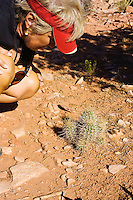 Woman inspects desert cactus, Canyonlands National Park, Utah