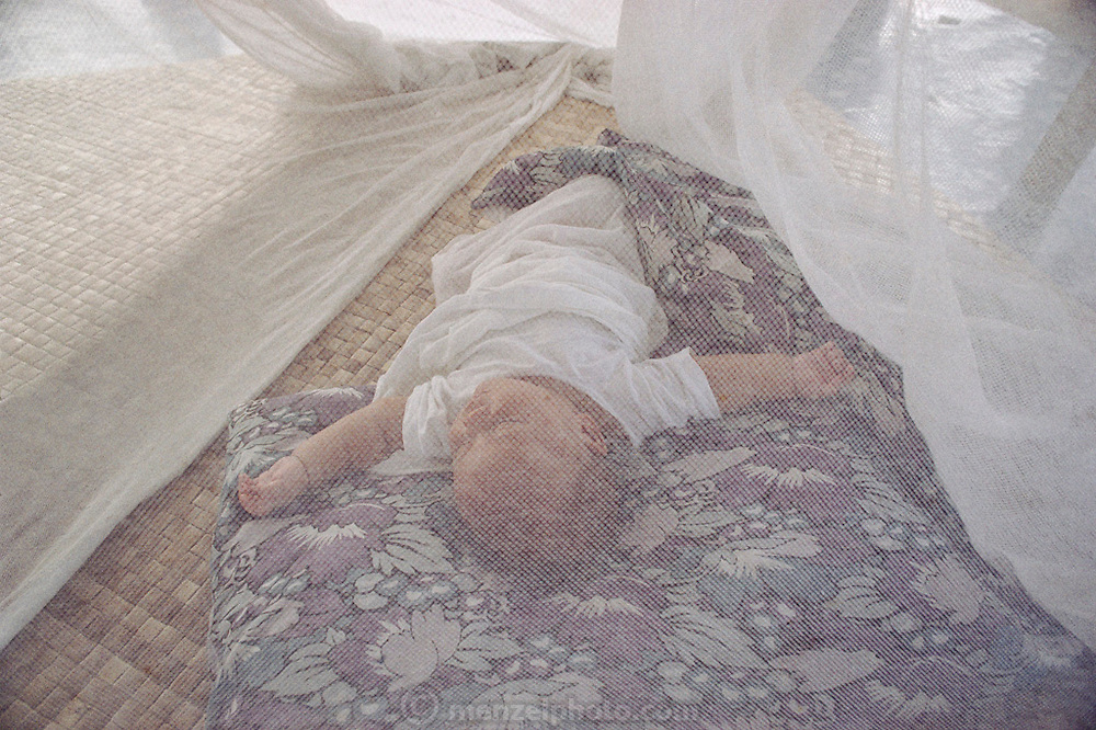 Junior Alatupe Lagavale sleeps under a mosquito net in Western Samoa. The Lagavale family lives in a 720-square-foot tin-roofed open-air house in Poutasi Village, Western Samoa. The Lagavales have pigs, chickens, a few calves, fruit trees and a vegetable garden. Material World Project.