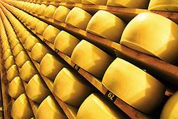O empresário Raul A. Randon na sua fábrica de queijos GRAN FORMAGGIO na cidade de Vacaria, a 237 km de Porto Alegre. FOTO: Jefferson Bernardes/ Agência Preview