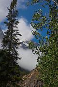 Cascade Creek Trail, at Grand Teton National Park, Wyoming
