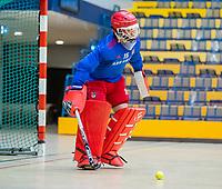 AMSTERDAM - keeper Philip van Leeuwen (Adam) . Zaalhockey hoofdklasse, Amsterdam H1-Laren H1 (9-1). COPYRIGHT KOEN SUYK