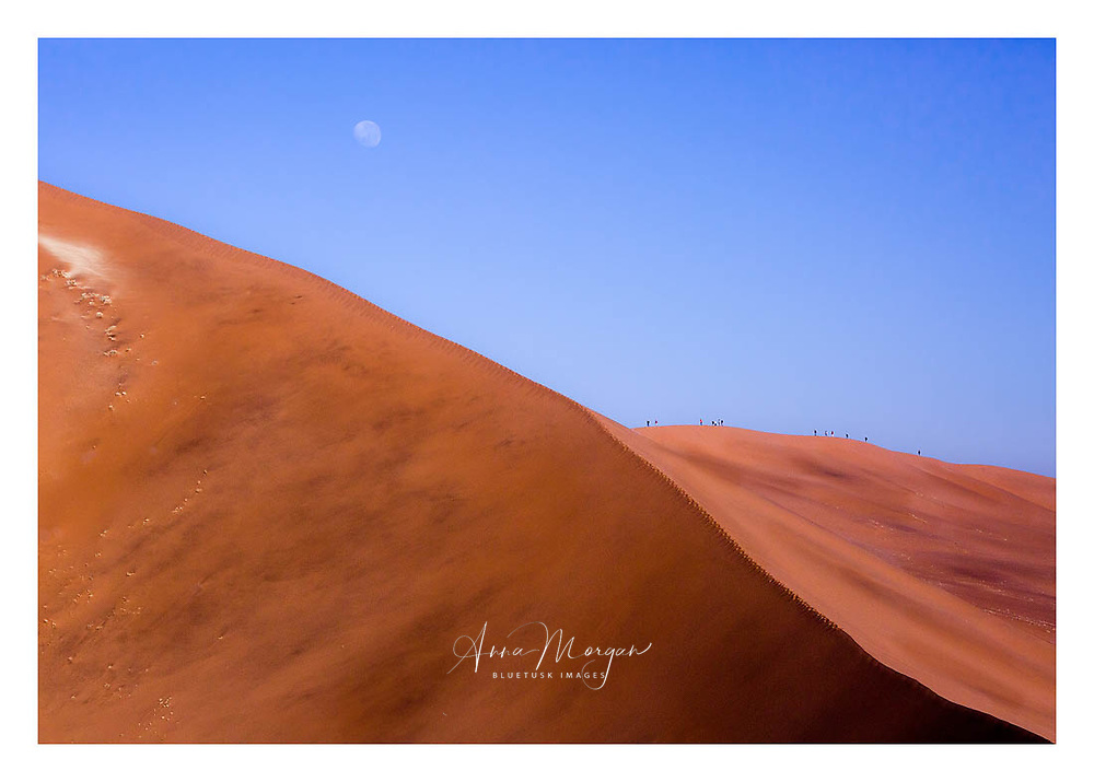 the towering dunes of the Namib desert at Sossusvlei dwarf the people climbing the ridge, Moon visible in the sky, Nambia