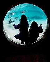 Kids at  ZSL London Zoo