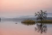Tawa Reservoir at sunrise in Satpura National Park, India