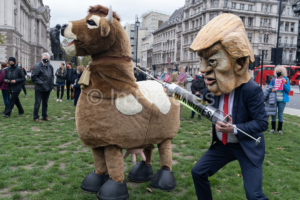 """Ten days ahead of the US Presidential elections, a Donald Trump lookalike holds a symbolic syringe containing the hormones that protesters say will be injected into livestock and sold to UK consumers if the UK negotiates a trade deal with the US, on 24th October 2020, in Westminster, London, England. Organisers, Global Justice Now say, """"The trade deal could lead to the NHS being opened up permanently to American healthcare companies; chlorinated chicken and hormone-fed beef; forced deregulation of the UK's environmental laws, workers' rights and rights to data privacy; and new rules that make it impossible to take effective action on the climate crisis."""""""