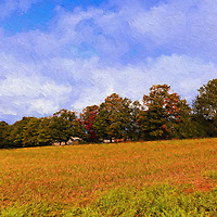 """""""Autumn Hills Painting""""<br /> <br /> Lovely autumn scene outside of Charlevoix Michigan on an early fall day! Golden fields, trees with a hint of fall color, and beautiful blue skies with white clouds!"""