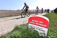 Illustration Coble Stones, Pave de la Rosee / KRISTOFF Alexander (NOR)/SMUKULIS Gatis (LAT)/ HALLER Marco (AUT)/ PAOLINI Luca (ITA)/ PORSEV Alexander (RUS)/ Team Katusha (Rus)/ Landscape during training on april 9 prior to the famous cycling race Paris Roubaix with paving stones paths which will take place on april 12, 2015 - Photo Tim de Waele / DPPI