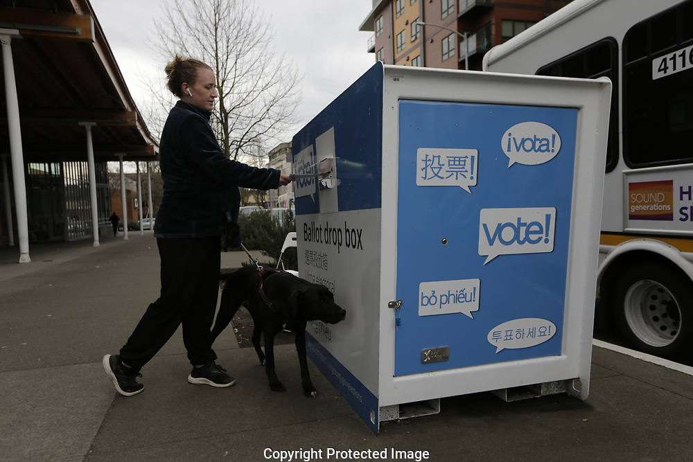 Voters drop off ballots on the Washington State primary day, Tuesday, March 10, 2020 in Seattle. Washington is a vote by mail state. (AP Photo/John Froschauer)
