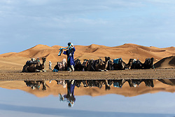 Reflections in water of camel caravan Erg Chebbi, Saharan Desert, Morocco