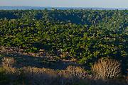 Parauapebas_PA, Brasil.<br /> <br /> Floresta Nacional de Carajas (Flona) em Parauapebas, Para.<br /> <br /> The Carajas National Forest in Parauapebas, Para.<br /> <br /> Foto JOAO MARCOS ROSA / NITRO