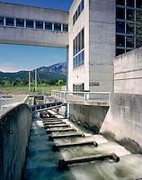 Fish ladders on the Bonneville Dam, Columbia River Gorge Oregon USA
