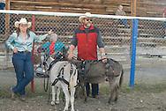 Montana Mule Days, Drummond, Montana  miniture donkey (Equus asinus) class