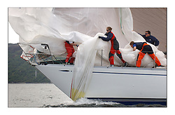 Yachting- Sundays inshore racing  of the Bell Lawrie Scottish series 2003 at Tarbert Loch Fyne. Again light westerly winds and flat water made for tactical racing...Desperado's crew drop the kite at the bow...Pics Marc Turner / PFM