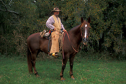 cowboy sitting on his horse