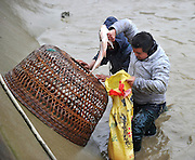 ZHANGJIAJIE, CHINA - JANUARY 13: (CHINA OUT) <br /> <br /> A villager shows fish at a pond as he takes part in a competition of catching fish with chicken cages to welcome new year on January 13, 2016 in Zhangjiajie, Hunan Province of China. Its a meaningful event for Tujia nationality to catch fish with chicken cages especially in great festivals which means May you have surplus and remainders year after year<br /> ©Exclusivepix Media