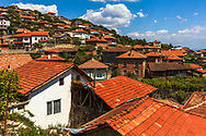 Red roofs village