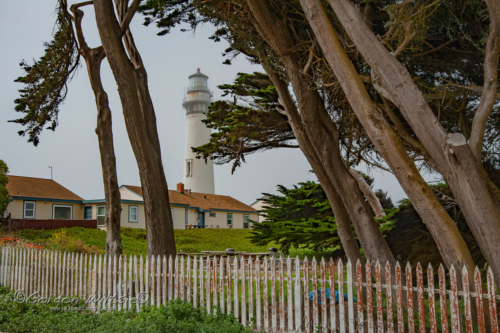 Cypress trees frame the Pigeon Point Lighthouse on the Pacific Ocean coast near Pescadero, California.