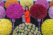 Dani Sinha, a presenter on 5 News, amongst the flowers of the National Chrysanthemum Society. The opening day of the Chelsea Flower Show.