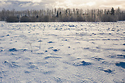 Sunlight shines over snow coverd meadow with forest in distance on snow on sunny winter morning, Vidzeme, Latvia Ⓒ Davis Ulands | davisulands.com