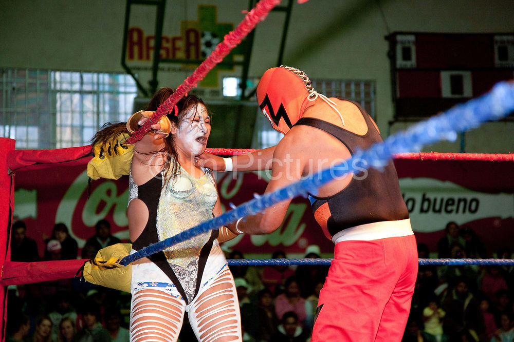 Male wrestler with female opponent in headlock on ropes in ring. Lucha Libre wrestling origniated in Mexico, but is popular in other latin Amercian countries, including in La Paz / El Alto, Bolivia. Male and female fighters participate in the theatrical staged fights to an adoring crowd of locals and foreigners alike.