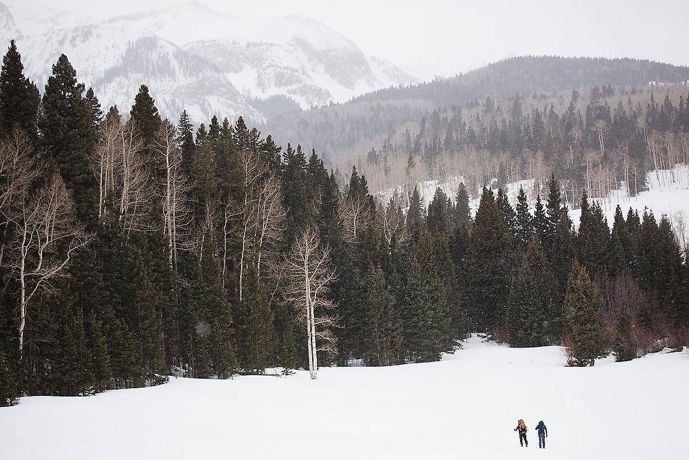 Sterling Roop and Judd MacRae ski across an open meadow in Uncompahgre National Forest, Colorado.