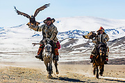 Kazakh eagle hunters hunting in the Altai mountains with their golden eagles on horseback, Altai Mountains, Bayan Ulgii, Mongolia