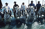 The procession of the two Saintes Maries, Marie Jacobe and Marie Salome, arrives at the seashore, surrounded by thousands of Roma, Gypsy, Gitan and Manouche pligrims, and flanked by Traditional Camargaise Guardians and their horses. <br /><br />Europe, France, Camargue, Saintes Maries de la Mer. The seaside town in the Camargue hosts a Gypsy festival once a year during May, where its landscape undergoes great changes. Otherwise it is a land bordered by sea, lakes and ponds, populated by flamengos, bulls and horses.