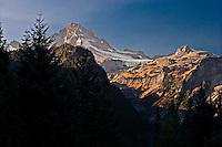 Autumn paints the slopes below Little Tahoma peak on Mount Rainier as viewed from the Cowlitz Canyon, Washington, USA