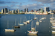 Downtown San Diego Skyline at North San Diego Bay