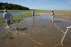 Bob, Diane & Mary On Horseshoe Crab Survey