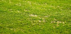 26.10.2016, Sportclub Platz, Wien, AUT, OeFB Samsung Cup, FC Blau Weiß Linz vs SK Rapid Wien, Achtelfinale, im Bild // during the OeFB Samsung Cup Round of last 16 Match between FC Blau Weiss Linz and SK Rapid Wien at the Sportclub Platz in Wien, Austria on 2016/10/26. EXPA Pictures © 2016, PhotoCredit: EXPA/ Sebastian Pucher