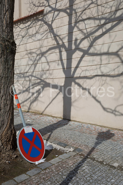A tree trunk and its own shadow on Loretanska street in Hradcany district, on 19th March, 2018, in Prague, the Czech Republic.