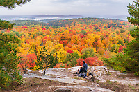 https://Duncan.co/person-sitting-above-fall-color-canopy