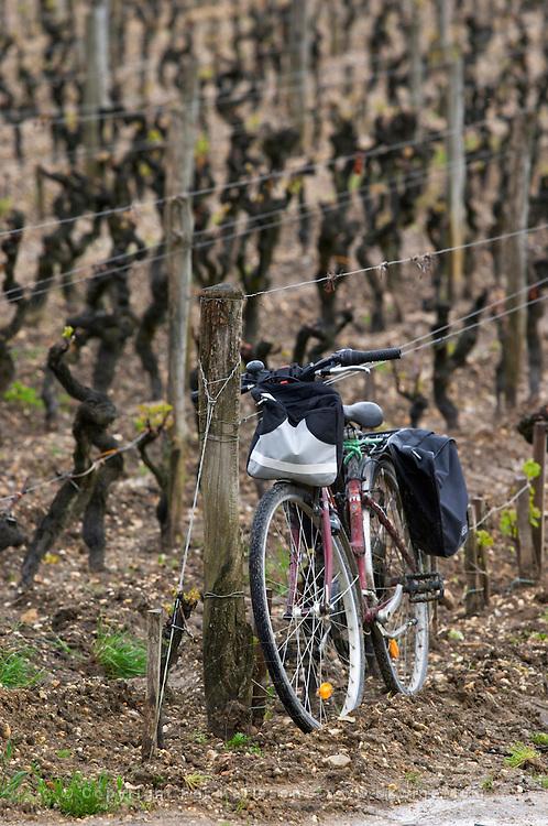 bicycle leaning against vineyard post chateau d'yquem sauternes bordeaux france